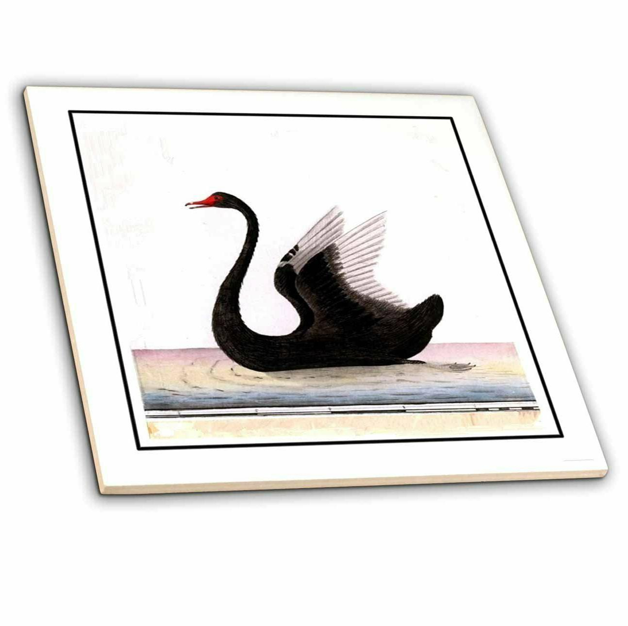 3dRose ct_48177_3 Framed Beautiful Art Deco Black Swan Ceram