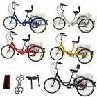 "Shimano 24"" 3 Wheel Adult Bike Tricycle Basket Trike Cruise"